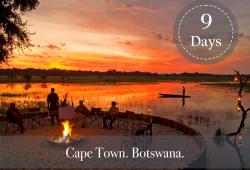 CAPE TOWN AND BOTSWANA SAFARI