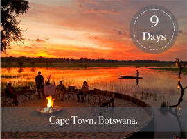 CAPE TOWN AND BOTSWANA SAFARI